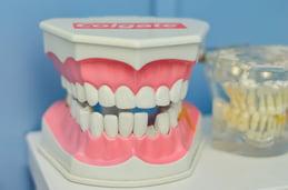 mouth-1437426_1280.jpg